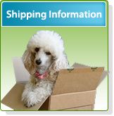 Dog Boot Shipping